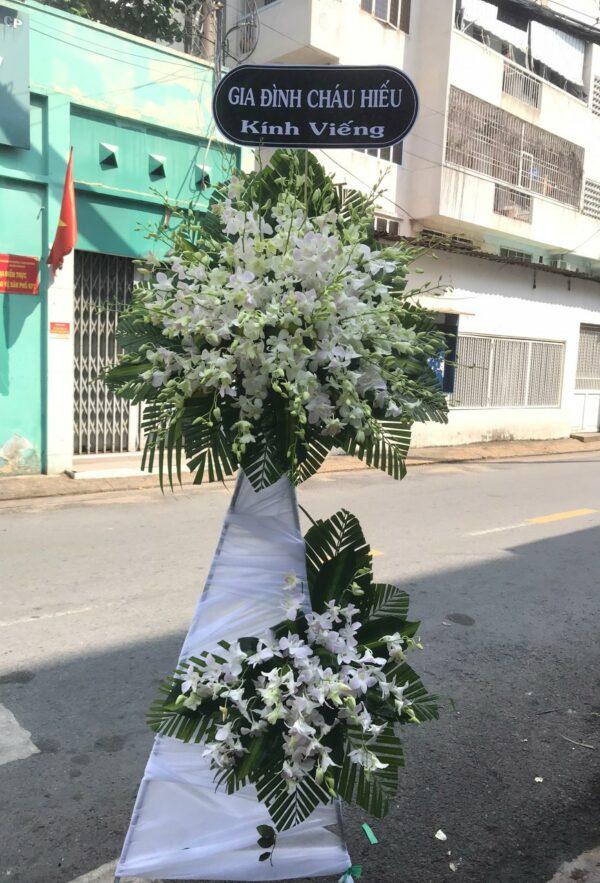 hoa đám tang mang thít